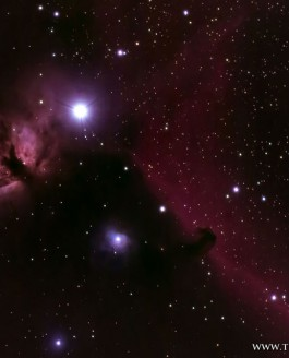 The Flame Nebula and the Horsehead